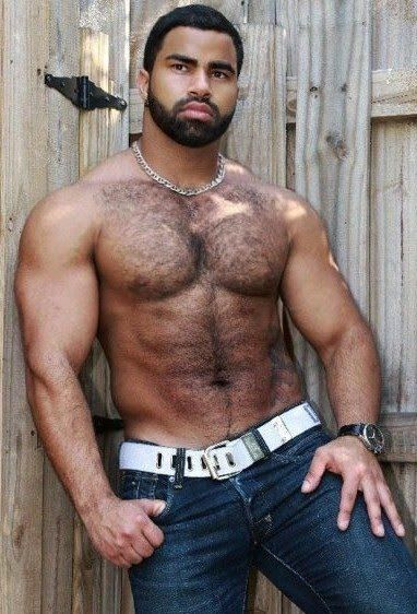 Bear black gay