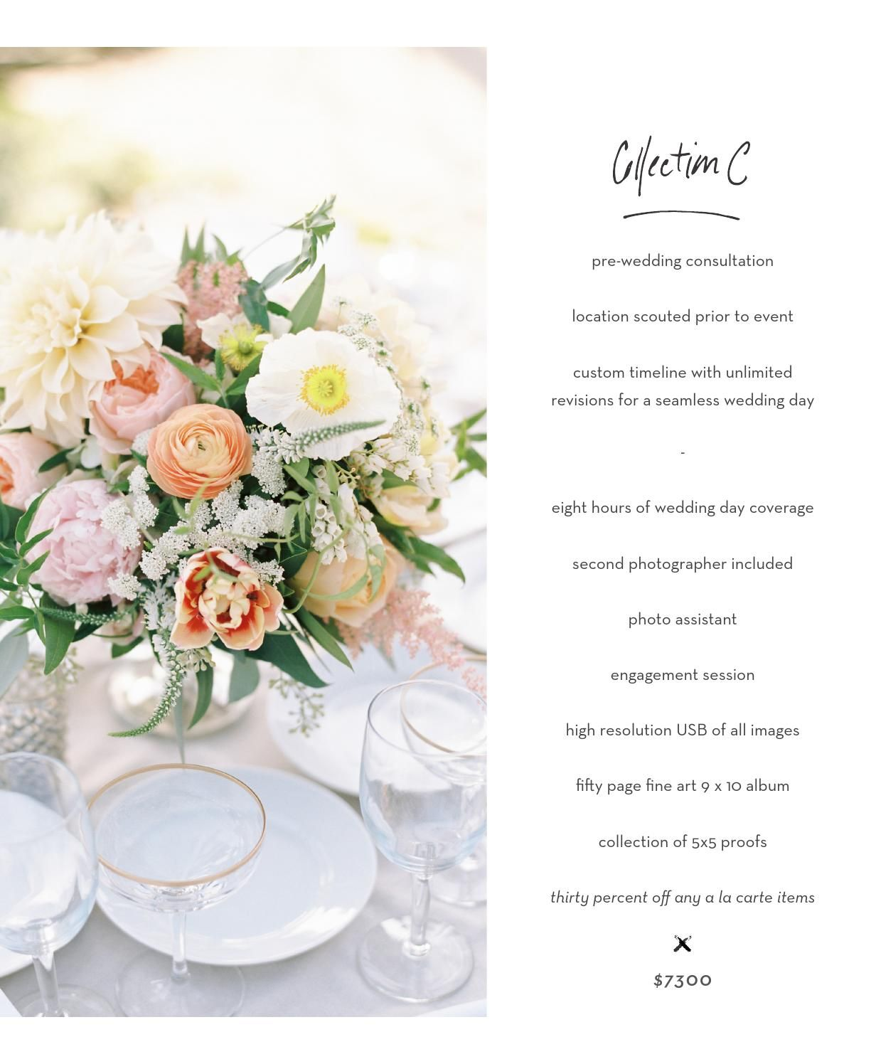 Ashley Kelemen 2015 Wedding Pricing | Weddings