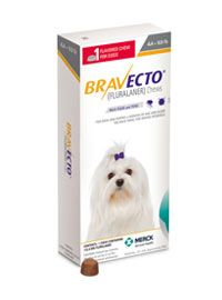 Bravecto Chewable 3 5lbs 4 4 9 9 Lbs 3 Months Protection Tick Medicine For Dogs Tiny Dogs Tiny Puppies