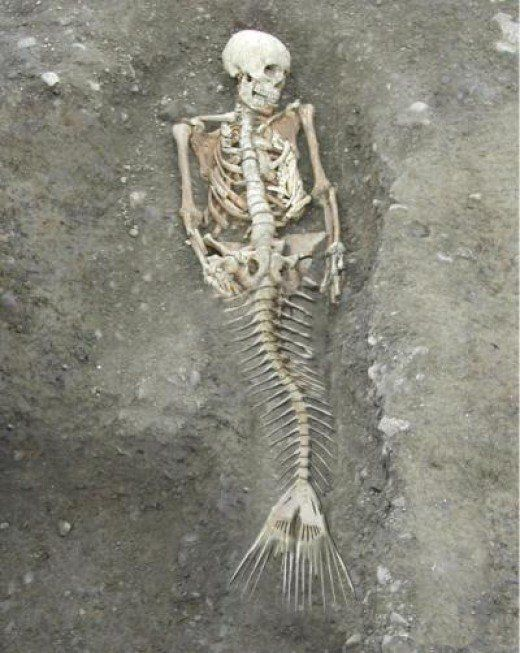 NOAA issues statement denying existence of mermaids