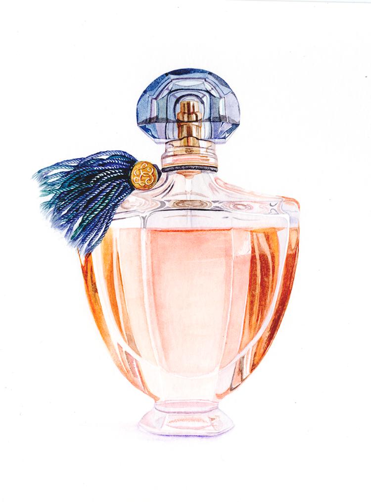 Watercolour Perfume Bottle Editorial Illustration By Katherine Appleby Perfume Art Painting Perfume Bottle Art Perfume Art