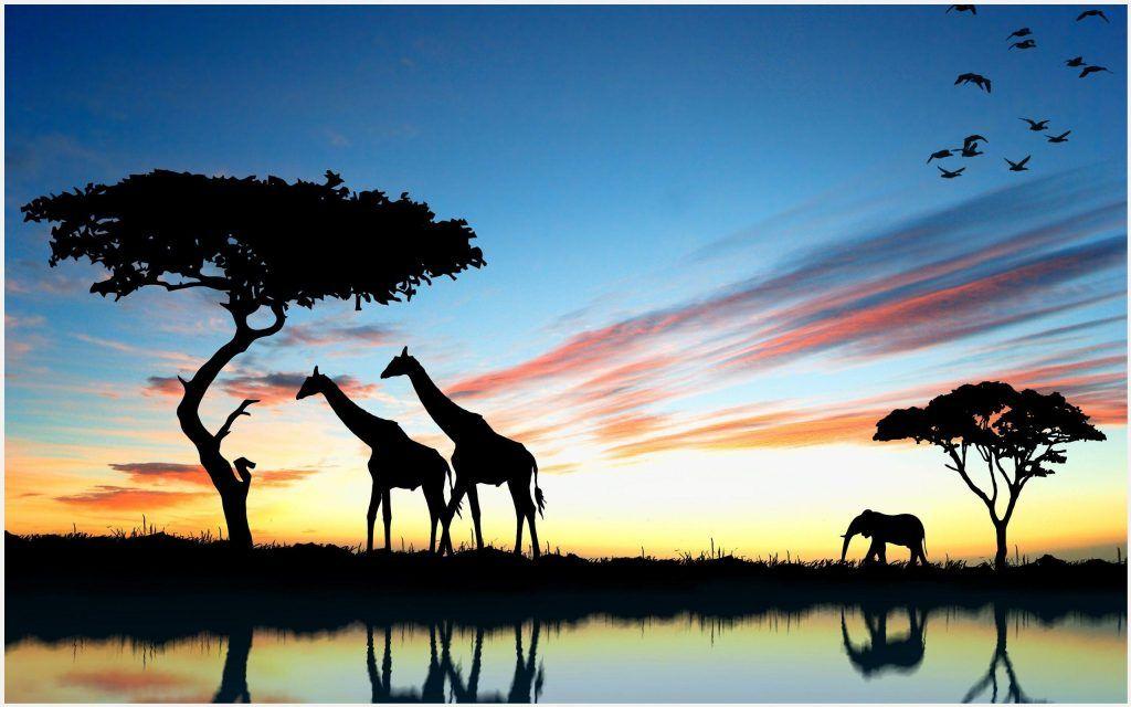 Safari Park Africa Wallpaper Safari Park Africa Wallpaper