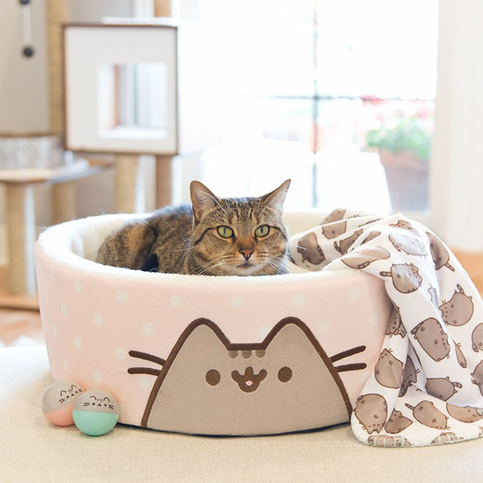Petco Today Unveiled An Exclusive Collection Of Cat Toys Beds Collars And Bowls Inspired By Pusheen The Cat Now Availabl Pusheen Cat Grey Tabby Cats Cat Bed