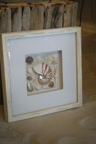 Sea Life Shell Art In A 30cm X 30cm White Wash Box Frame Diy