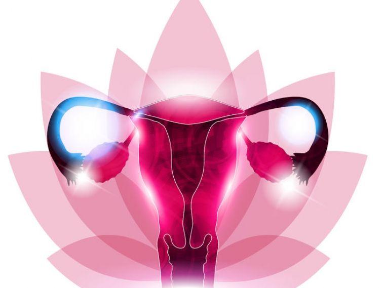 Fertility benefits of nacetyl cysteine nac