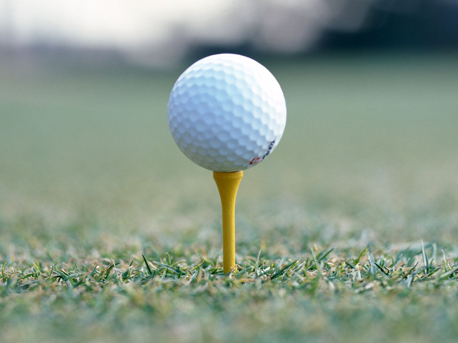 Golf is one of those sports where balls matter. Don\'t be one of ...