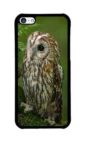 Cunghe Art Custom Designed Black PC Hard Phone Cover Case For iPhone 5C With Bird Predator Moss Phone Case https://www.amazon.com/Cunghe-Art-Custom-Designed-Predator/dp/B015XI8HXA/ref=sr_1_520?s=wireless&srs=13614167011&ie=UTF8&qid=1466387586&sr=1-520 https://www.amazon.com/s/ref=sr_pg_22?srs=13614167011&fst=as:off&rh=n:2335752011&page=22&ie=UTF8&qid=1466128299