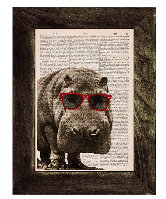 Cool Hippo with Sunglasses Wall Decor perfect for gifts ...