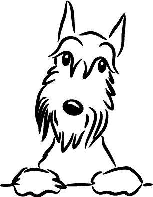 Pin By Sebas Jm On Dog Gone It I Love Schnauzers Schnauzer Art Dog Art Schnauzer