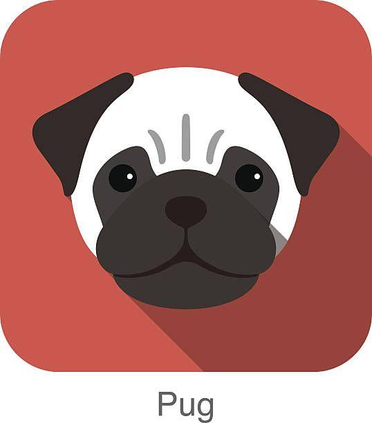Pug Dog Face Portrait Flat Icon Design Vector Art Illustration