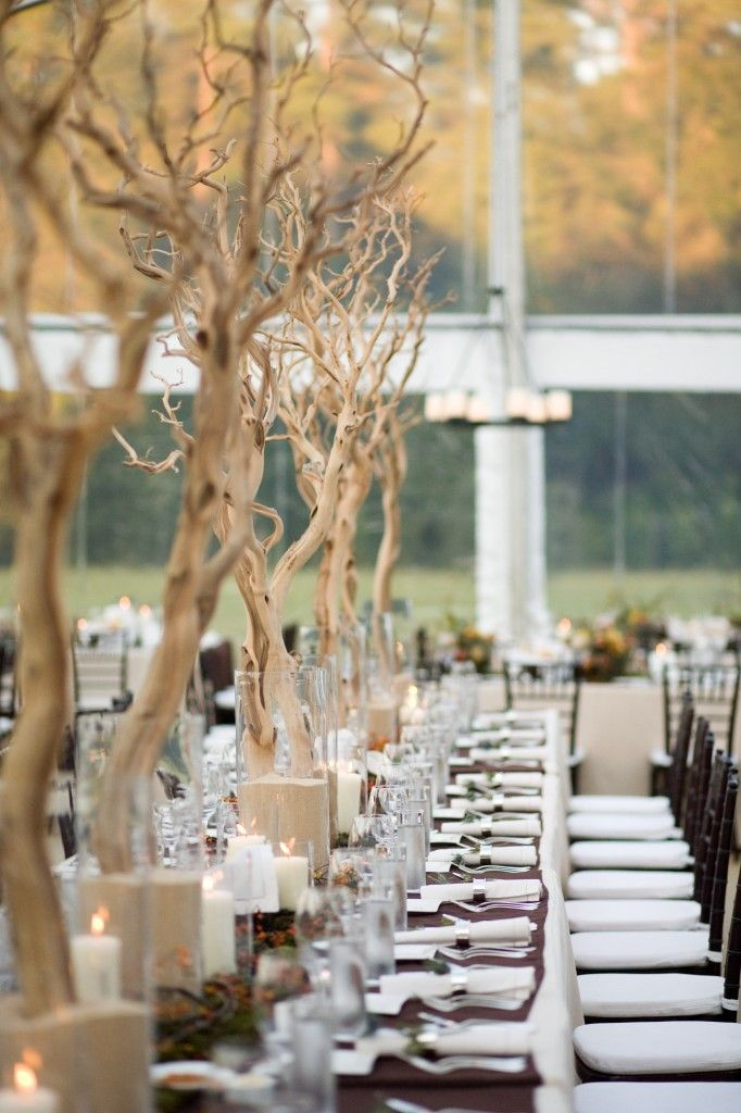 Aproveite o fim de semana centerpieces wedding and for Tall wedding centerpieces with branches