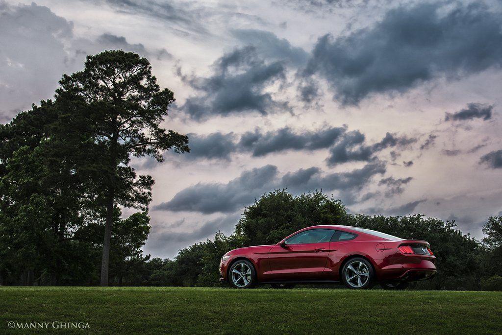 #Ford #Mustang #musclecars #mannyghingacarphotos