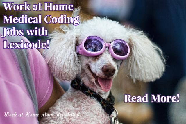 Lexicode Work At Home Medical Coding Jobs Work At Home Mom