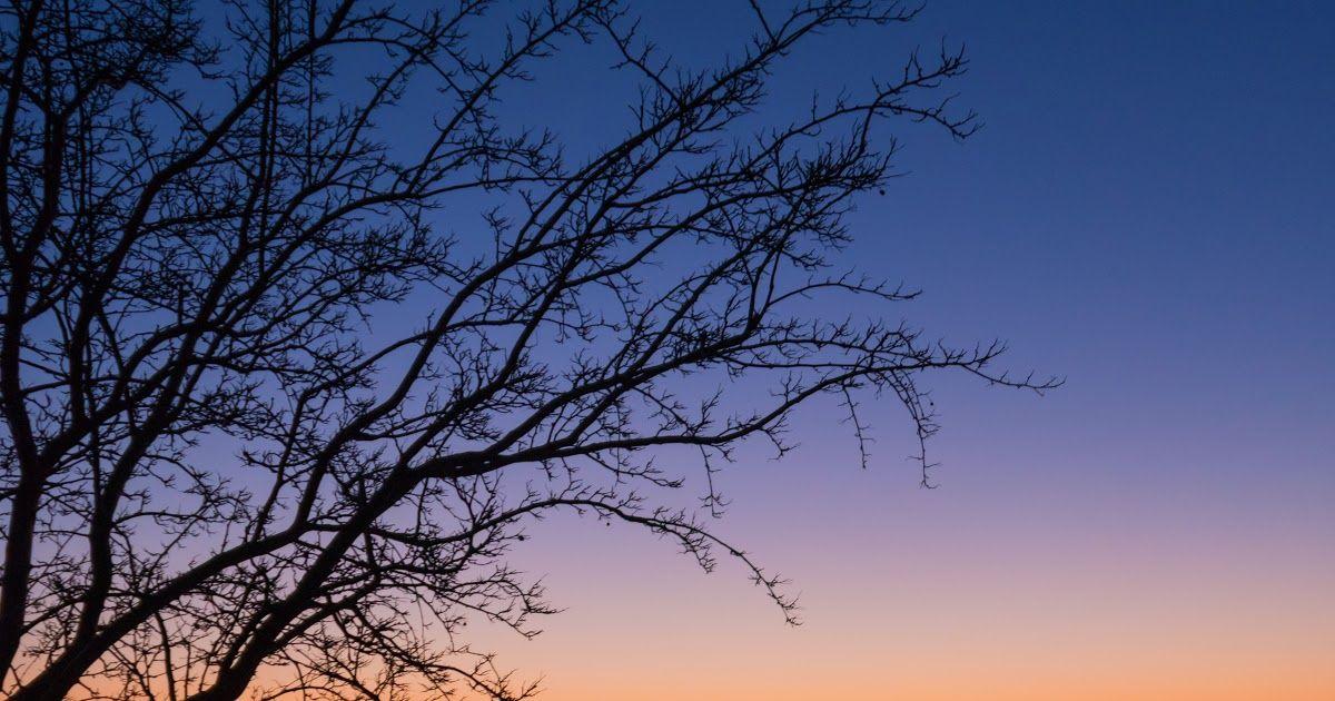 25 Gambar Pemandangan Alam Matahari Terbit Di Siang Hari Misalnyapemandangan Danau Pun Tak Kalah Menawan Pema Di 2020 Pemandangan Matahari Terbenam Matahari Terbit