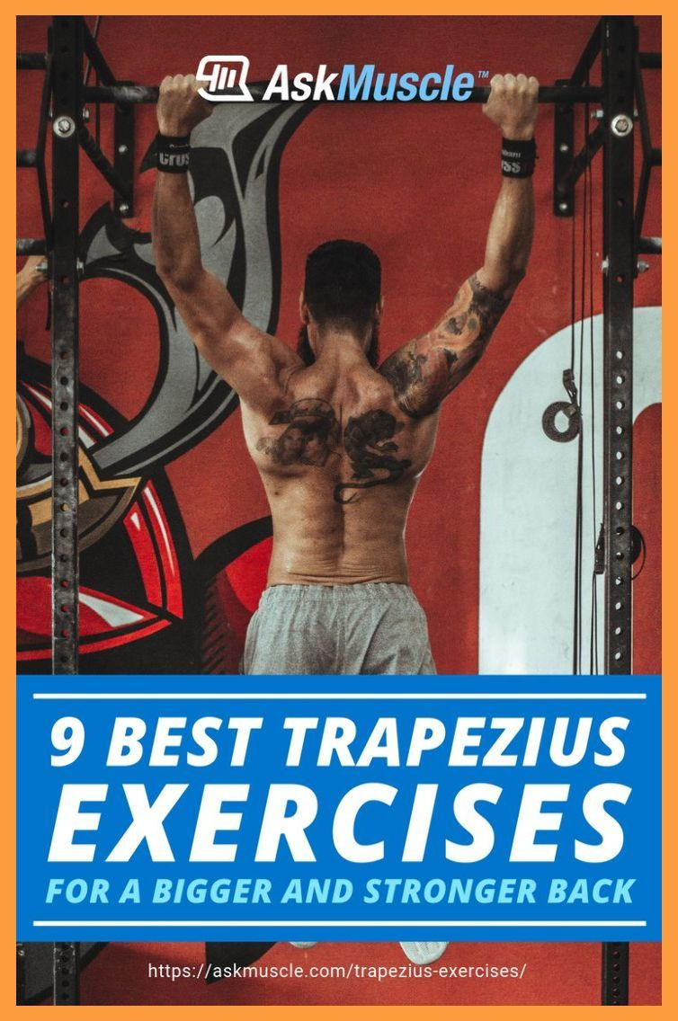 9 Best Trapezius Exercises for a Bigger and Stronger Back | Trapezius Exercises | Quad exerci... #trapsworkout
