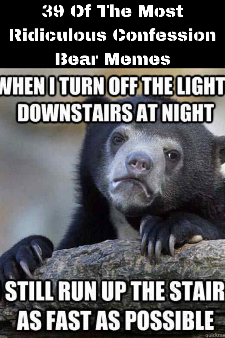 39 Of The Most Ridiculous Confession Bear Memes In 2020 Confession Bear Bear Bear Meme