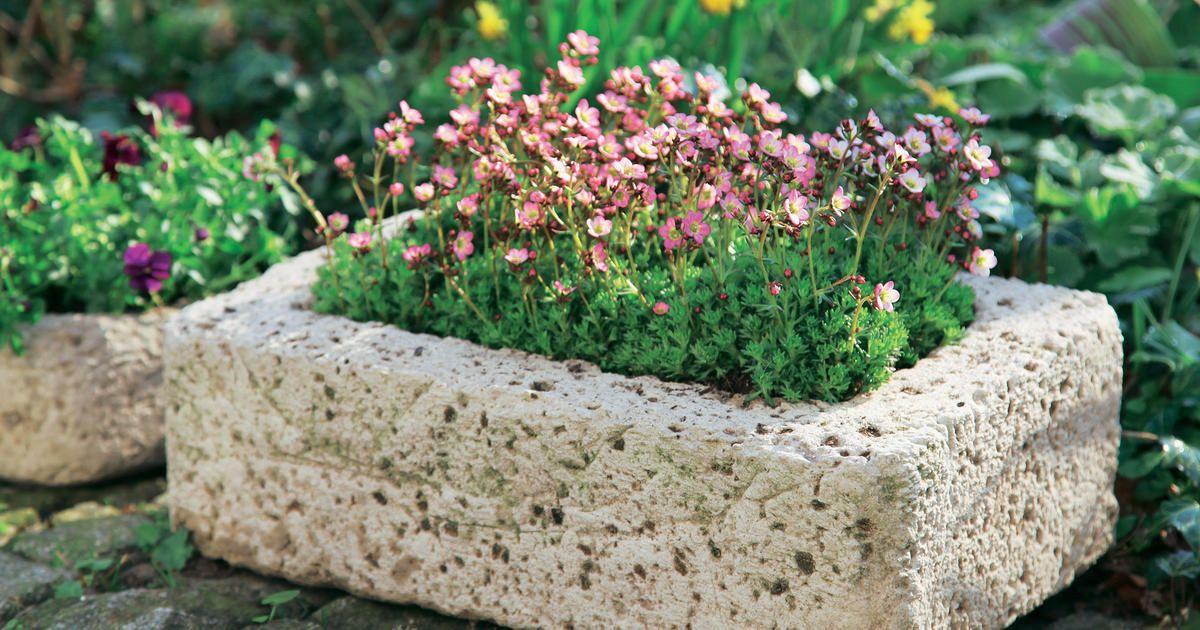 Pflanzgefäße aus Beton selber machen Garden ideas and Gardens - schoner garten mit wenig geld