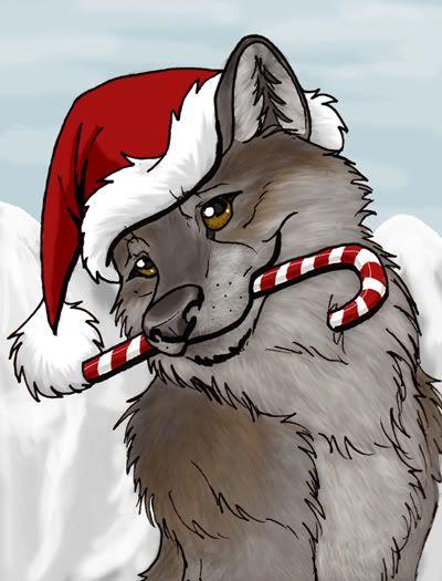 Christmas wolf - christmas Photo   Books   Pinterest   Wolf, Wolf ...