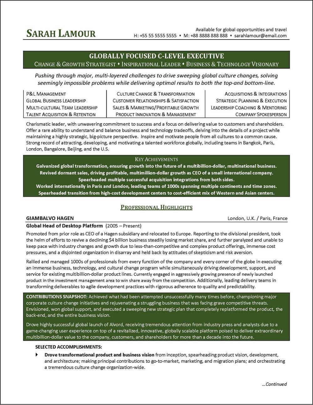 C Suite Resume Examples Pinterest Resume Examples Resume And