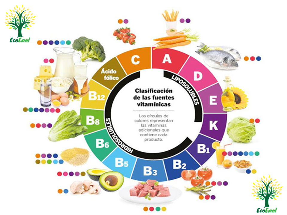 tabla de alimentos con vitamina b2