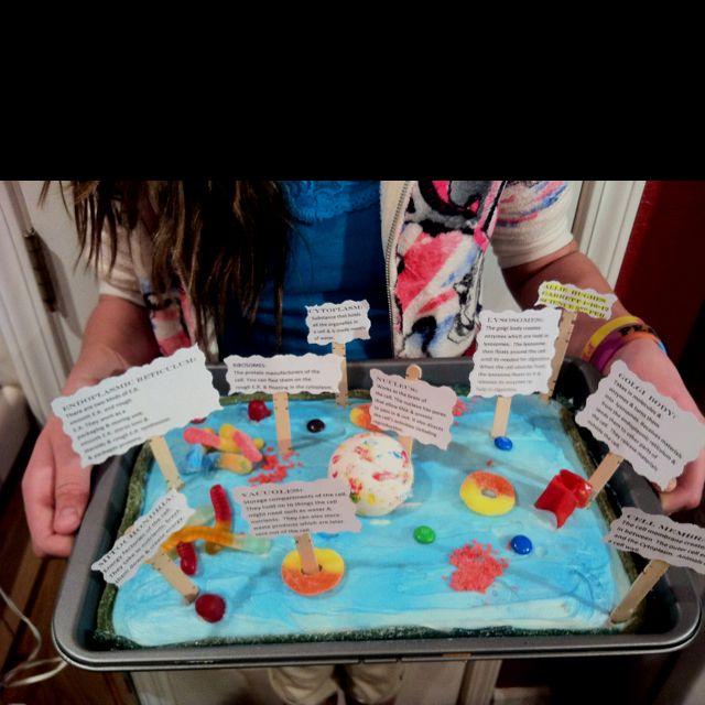 Allies animal cell model cake