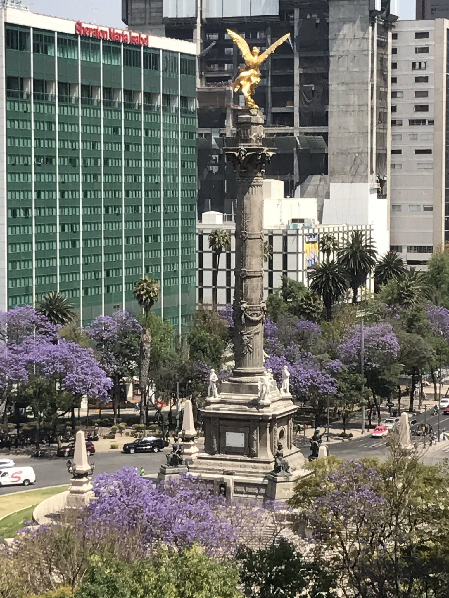 Ciudad de México, Paseo de la Reforma, Angel de la Independencia
