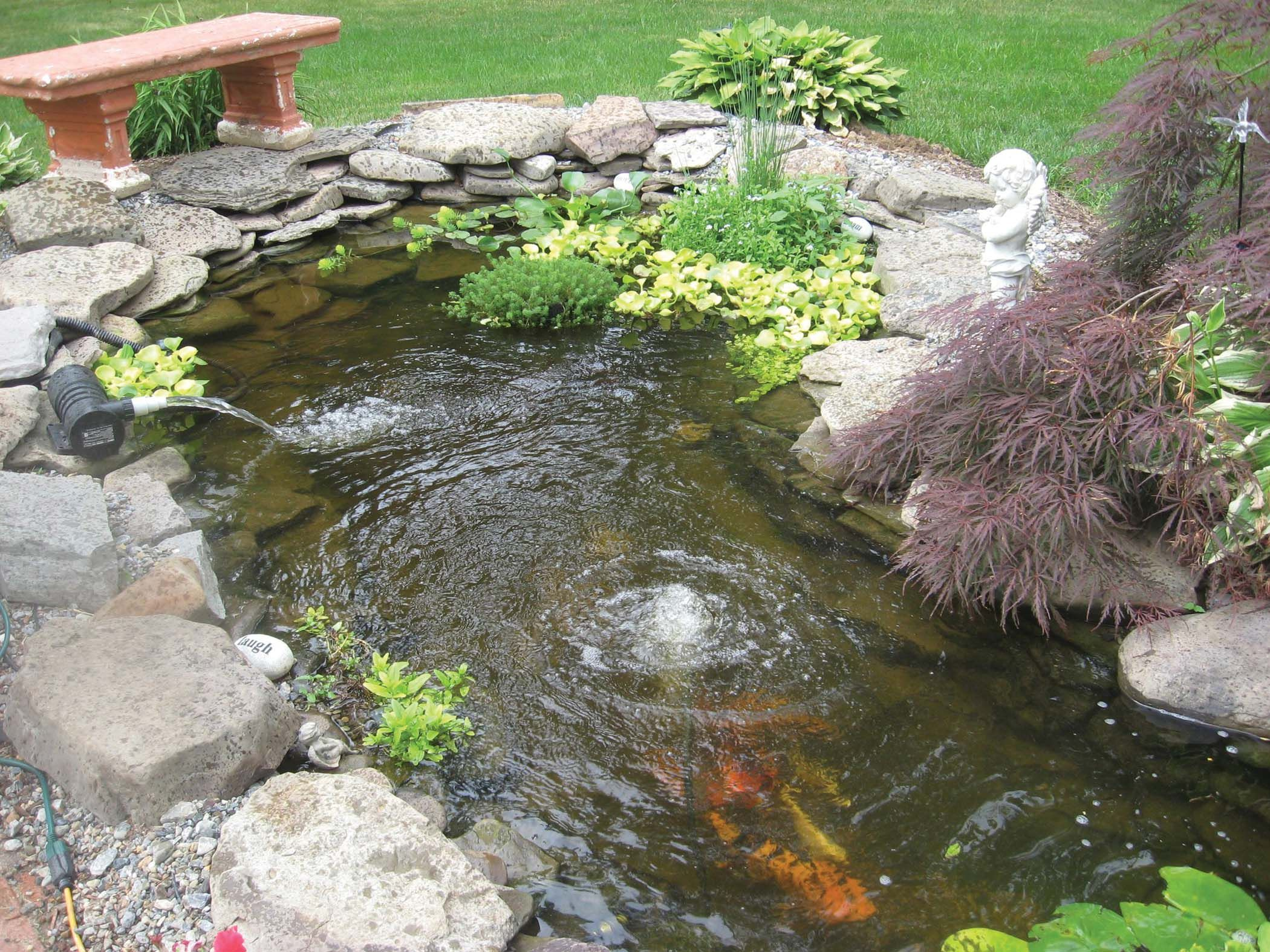 Small koi pond kits garden pond and koi pond aeration for Backyard pond maintenance