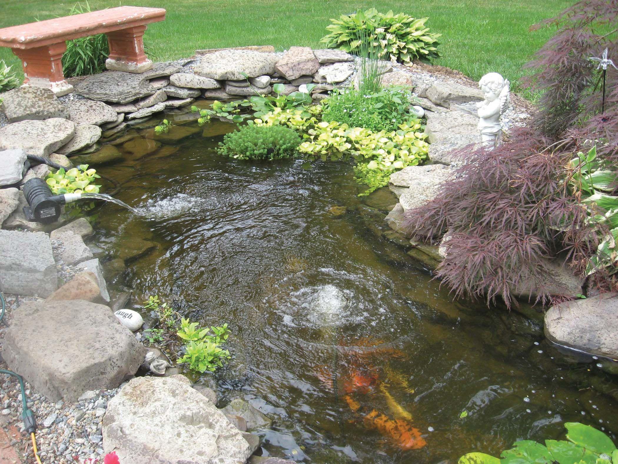 Incroyable Garden Pond And Koi Pond Aeration | Absolute Aquatics | Equipment