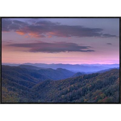 "Global Gallery Newfound Gap, Great Smoky Mountains National Park, North Carolina by Tim Fitzharris Framed Photographic Print on Canvas Size: 24"" H ..."