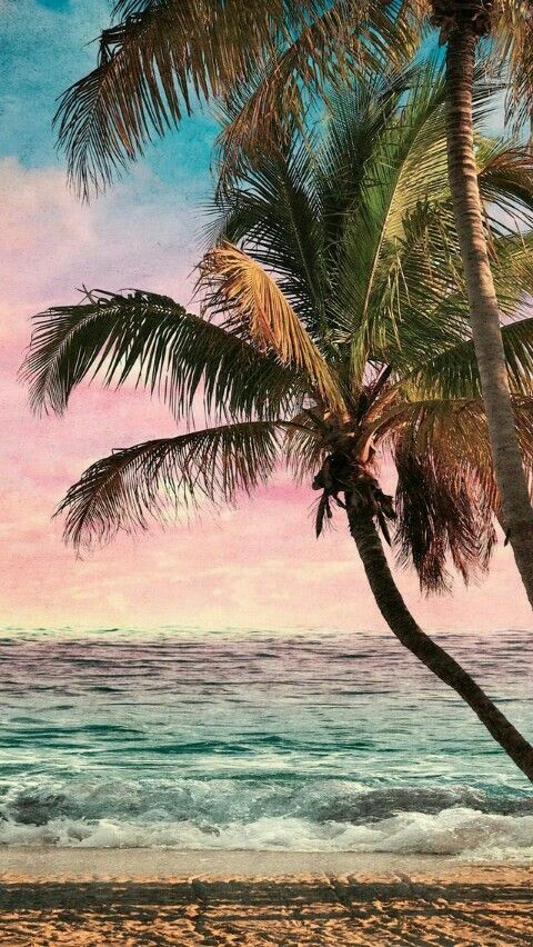 Pin By Tabitha Prentice On Apple Watch Wallpaper Iphone Summer Beach Wallpaper Iphone Iphone Wallpaper Tropical