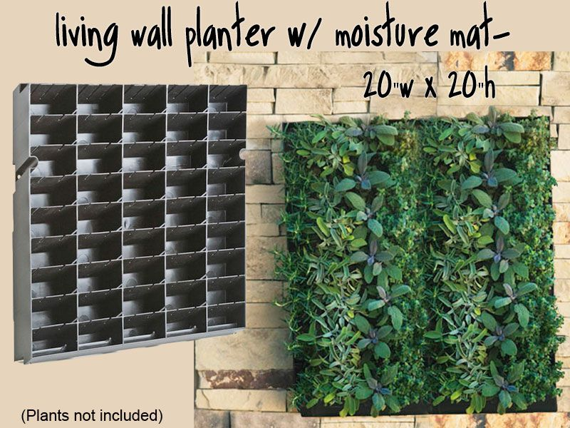 large living wall planter 20 w x 20 h diy projects vertical garden kits living wall. Black Bedroom Furniture Sets. Home Design Ideas