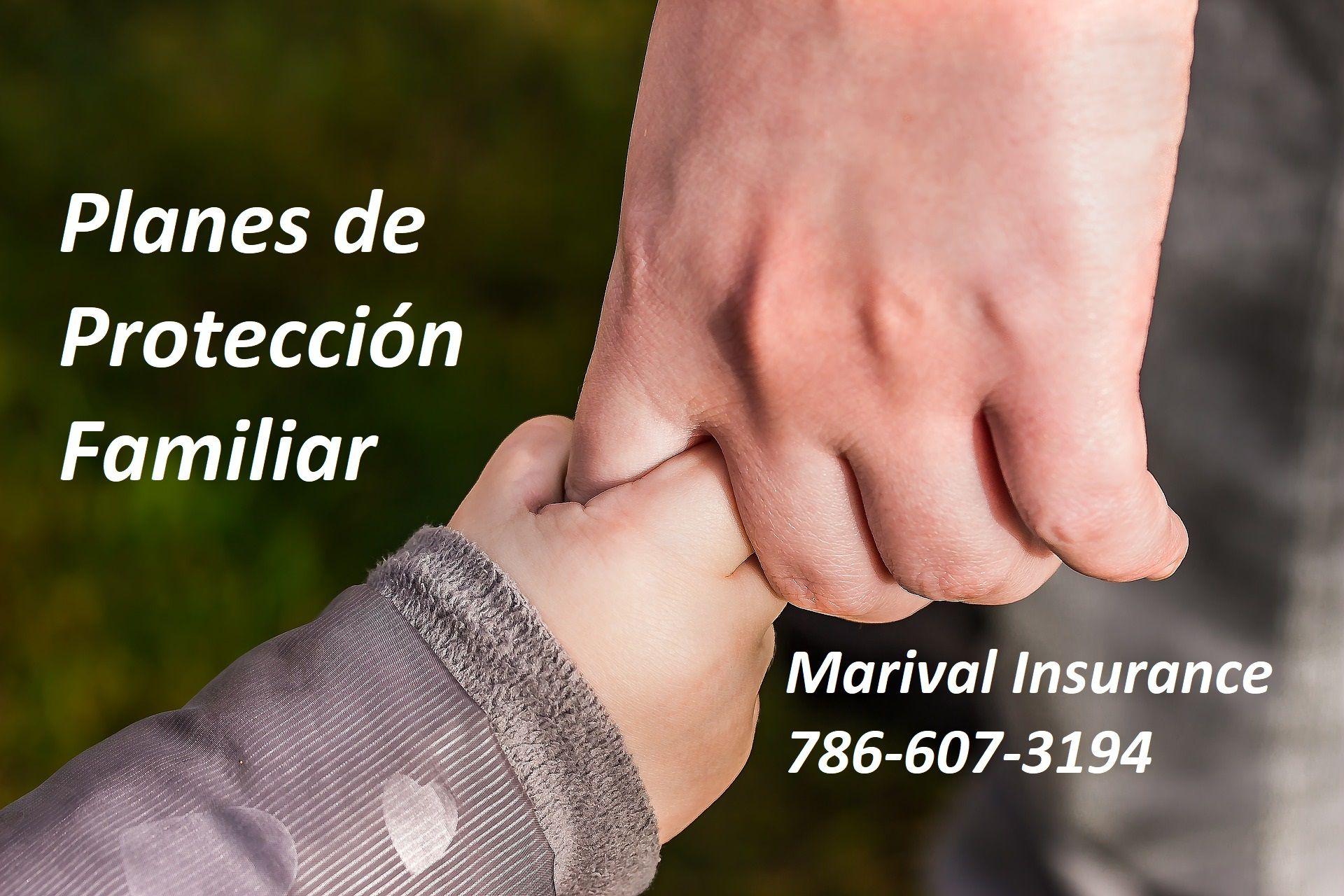 Planes De Proteccion Familiar Seguro De Vida Protecciones Familia
