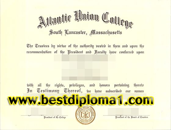 Buy Uni Coursework: Safe, Quick, and Simply the Best   blogger.com