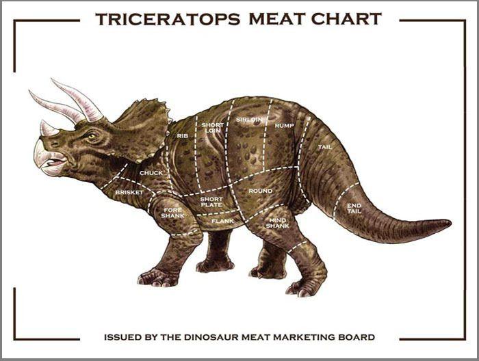 Triceratops Meat Diagram Dinosaurs Pinterest Dinosaur Art