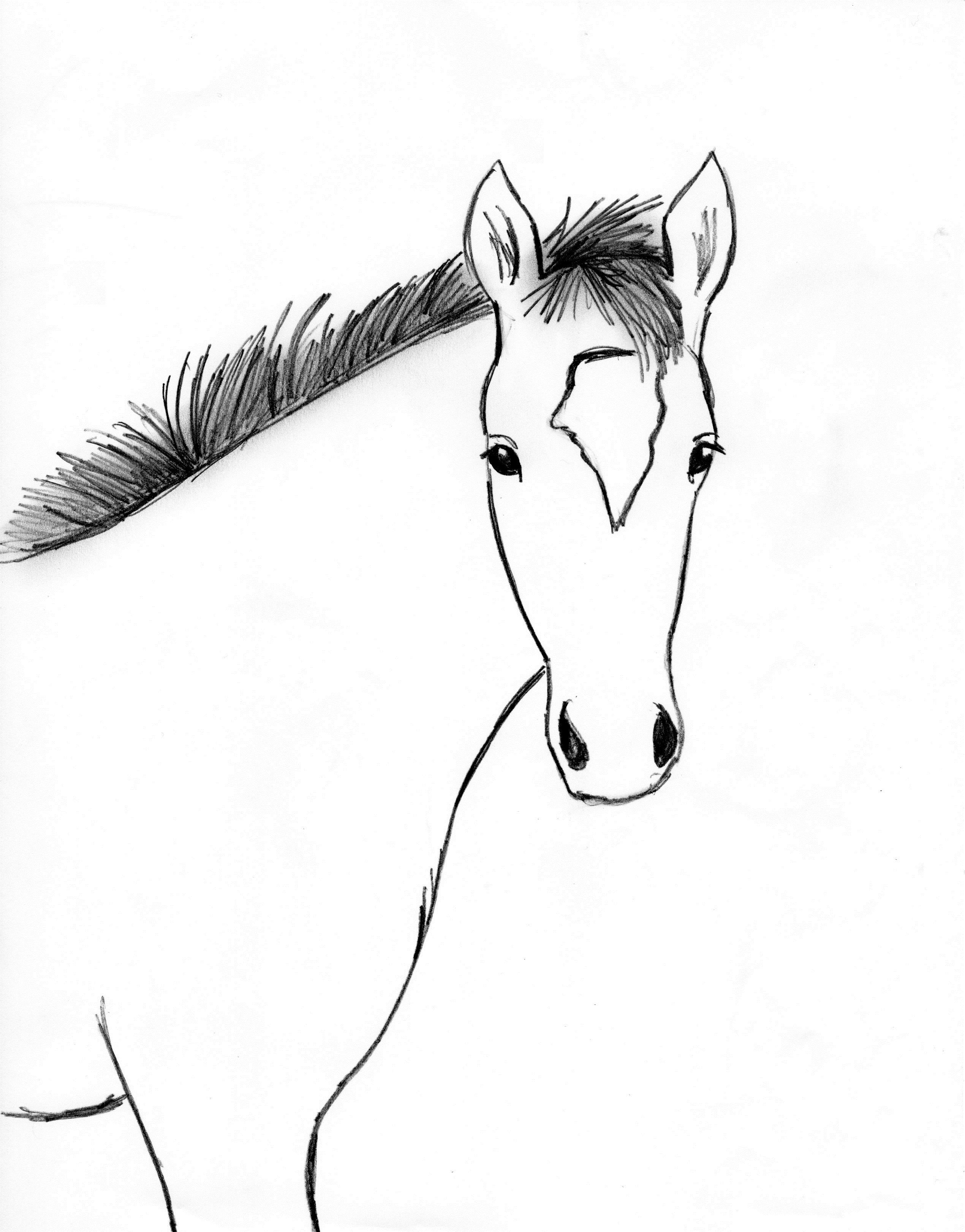 Uncategorized Drawing Of A Horse draw a horse step by horses pinterest drawings step