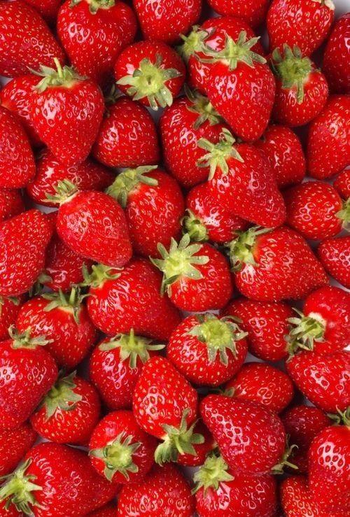 Erdbeeren / Strawberries + Obst - Früchte / Fruit