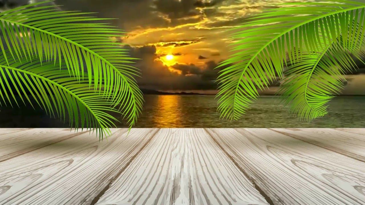 Beautiful 3d Animation With Sea Beach Scenery 3d Background Video Effec Beach Scenery 3d Background Background