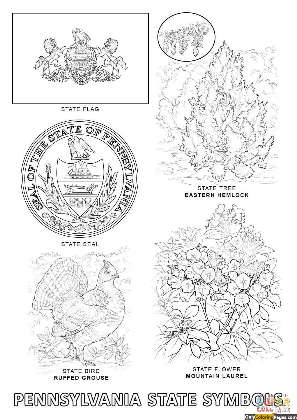 Pa State Symbols Coloring Pages Flag Coloring Pages