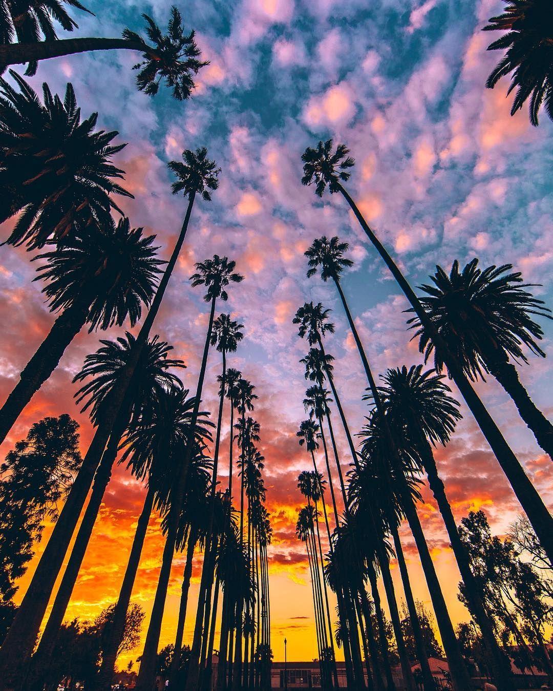Dating στο Σαν Ντιέγκο της Καλιφόρνιας