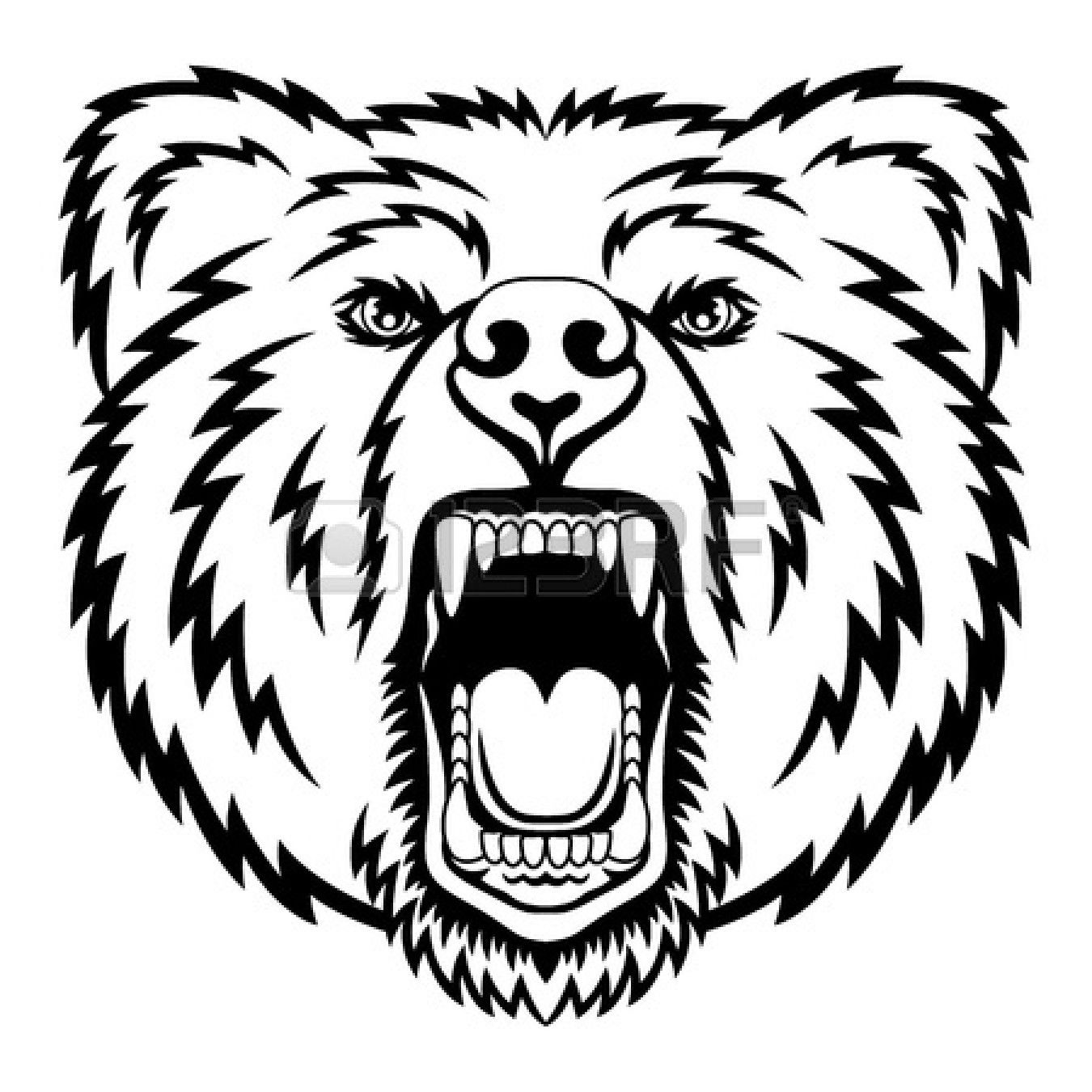 How To Draw Grizzly Bear Drawing Image Gallery  Lapse Shot