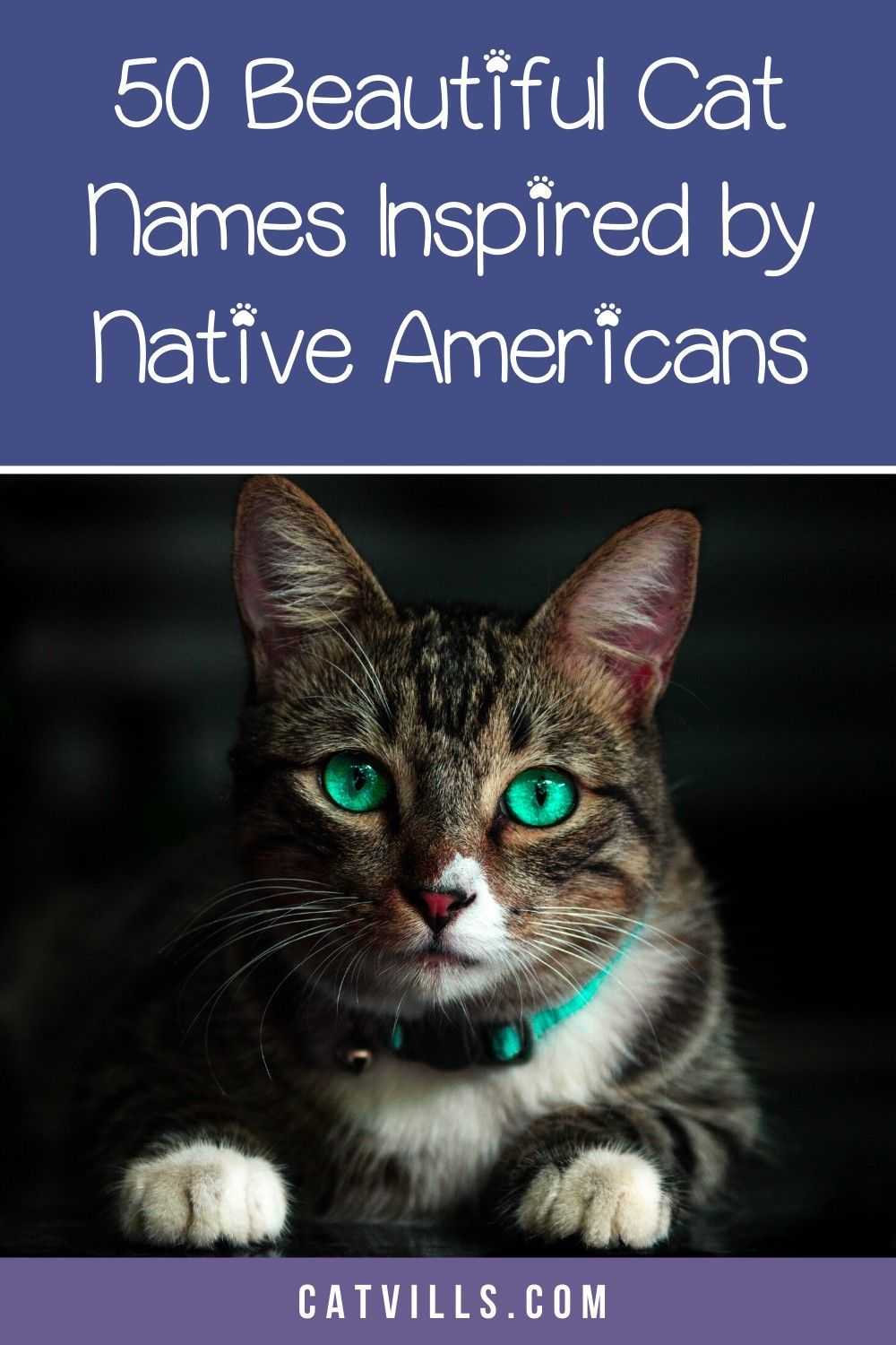 Looking for some meaningful Native American cat names to