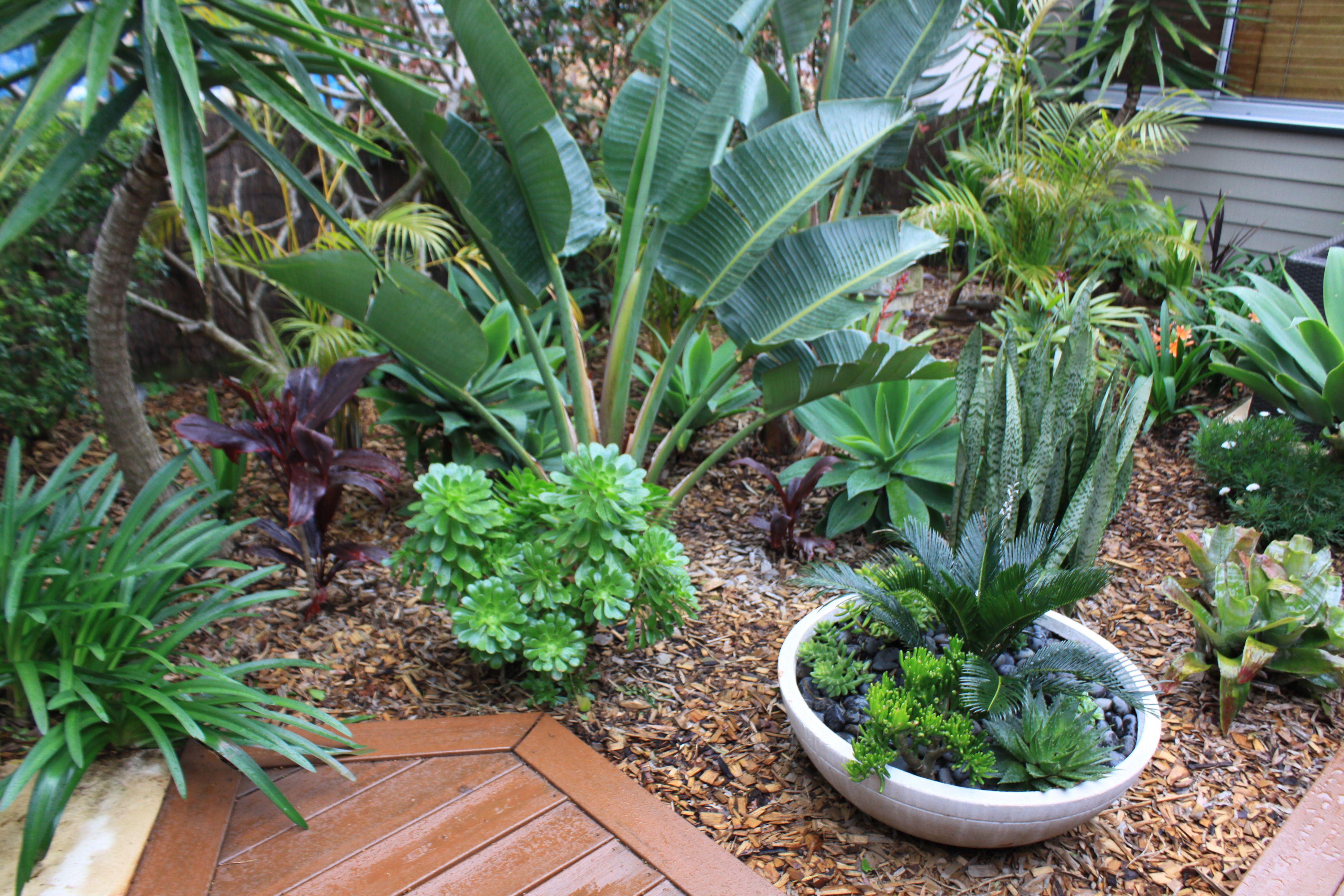 2015 Entry - Spring Garden Competition