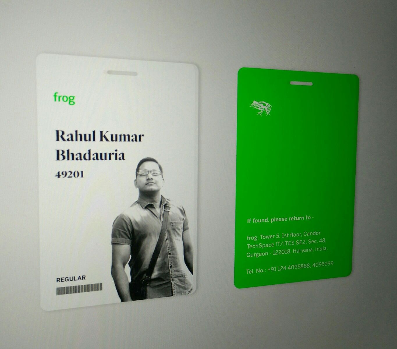 frog employee id card concept in progress   idcard  frog
