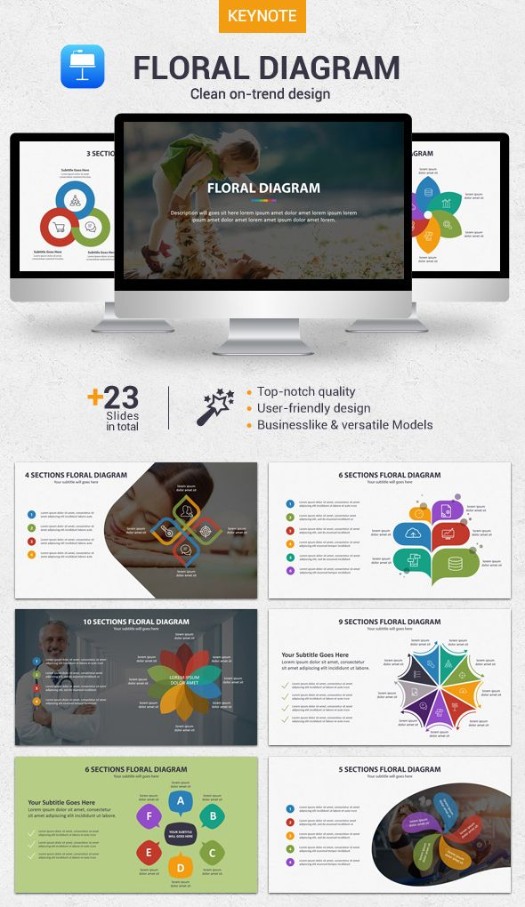 Floral diagram keynote keynote template and floral accmission Gallery
