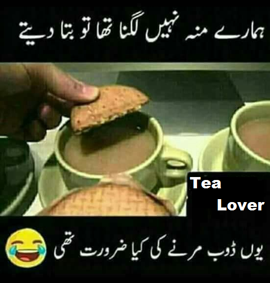 Pin on Tea Lover