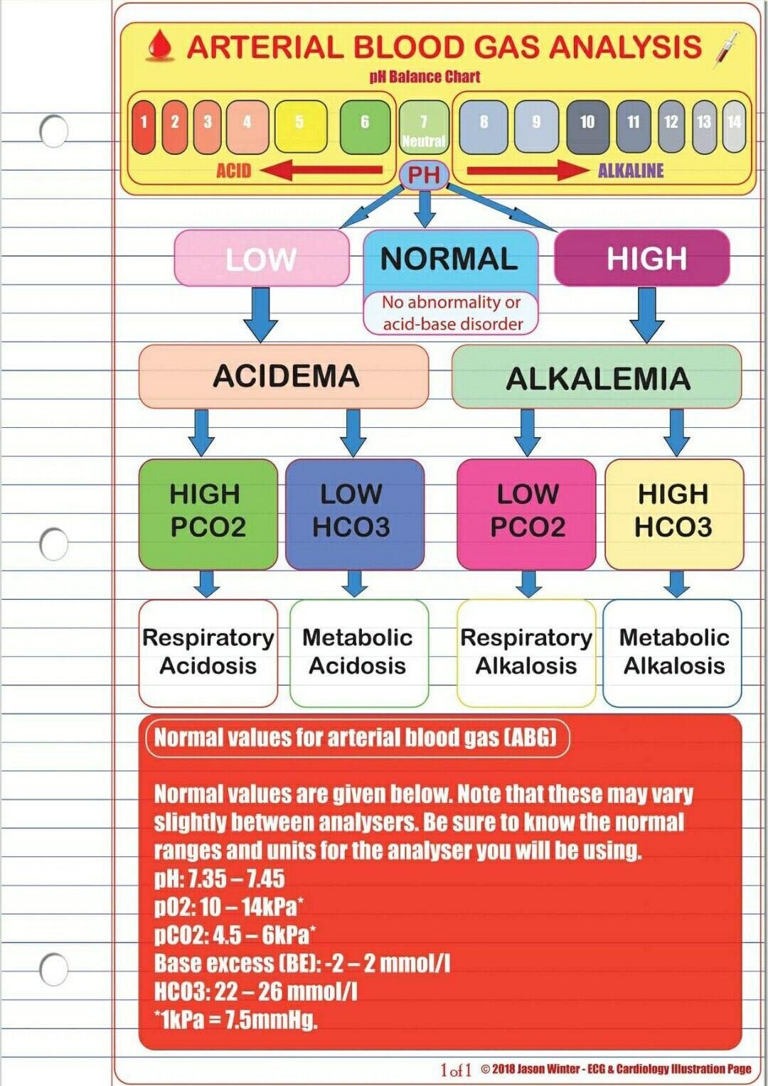 Arterial Blood Gases Nsg Abg T Nursing Students