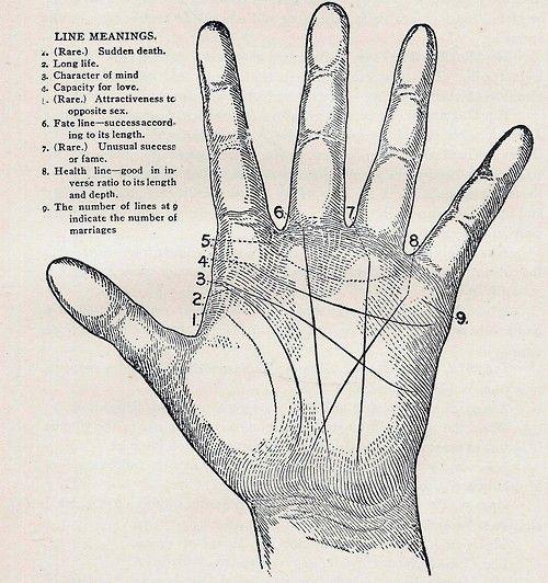 Palm reading chart sex line