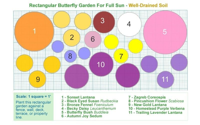 Butterfly Flower Garden Plans 20 Scale 1 Square 1 To - flower garden plans and layouts