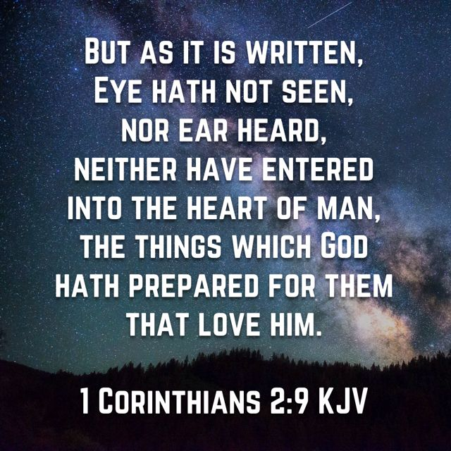 But as it is written, Eye hath not seen, nor ear heard