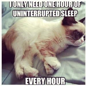 Hilarious grumpy cat, funny grumpy cat, grumpy cat jokes ...For more funny photos and humor quotes visit www.bestfunnyjokes4u.com/rofl-best-funny-joke-pic/ by courtney